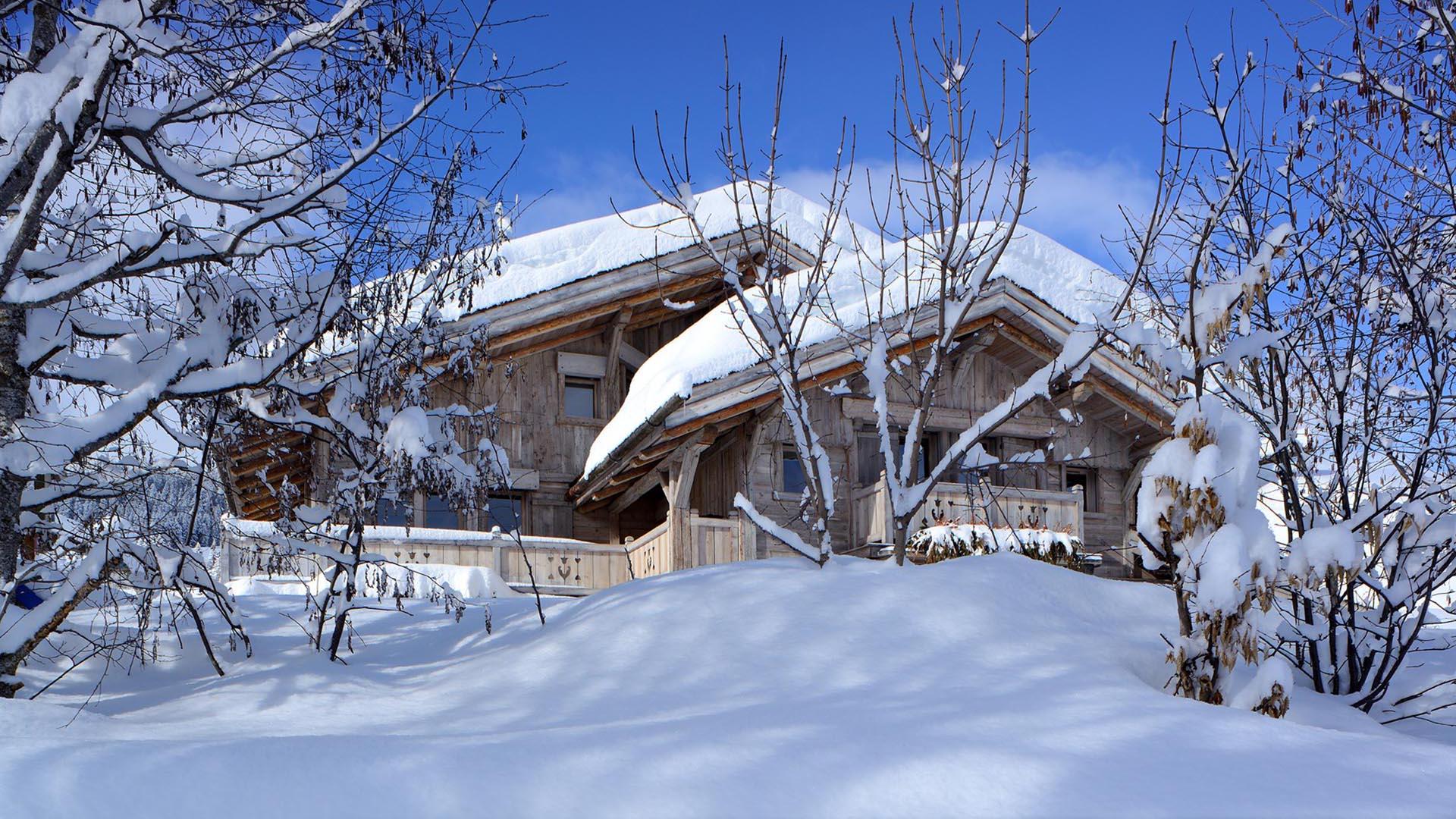 Chalet Alpes - Vue 1